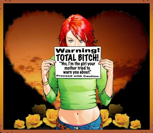 She Is A Total Bitch With Or Without Coffee Vintage Metal Art Sign Vintage Metal Art